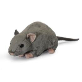 Living Nature Ratte mit Squeak Kids Weichtierspielzeug Kinderspiel Fun - 1