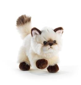"""Plüschtier Katze """"Thaytoo"""" - 21 cm - 1"""