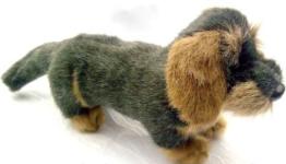Förster Stofftiere 1506 Rauhaardackel mini 15cm - 1