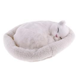 Homyl Süße Plüschtier schlafende Tiere Kuscheltier Plüschfigur Spielzeug Auto Haus Tisch Dekoration - Perserkatze - 1