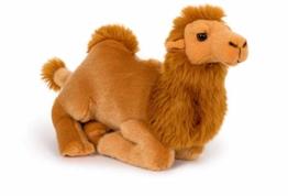 Unbekannt Stofftier Dromedar, 30 cm, Kamel, Kuscheltier Plüschtier Kamele Trampeltier - 1