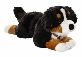 Carl Dick Berner Sennenhund mit Geschirr aus Plüsch ca. 55cm 3039 - 1