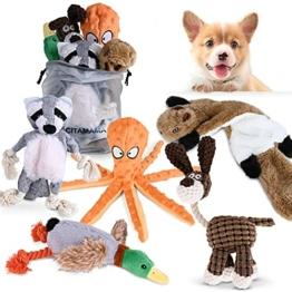 CITAMAMA Quietschendes Hundespielzeug, 5 Stück Hundeplüschspielzeug Kauspielzeug für Hunde Zahnreinigung Interaktives Trainingsspielzeug Welpenspielzeug für kleine Mittel Hunde - 1